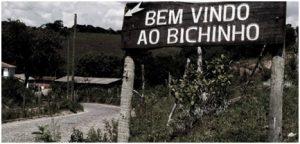 Bichinho 1